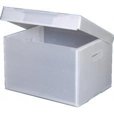 Correx - 3.5mm White, 1200x600mm